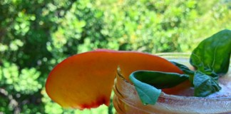 Tropical Citrus Delight slowjuicer recept