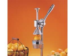 Sinaasappelpers Kopen
